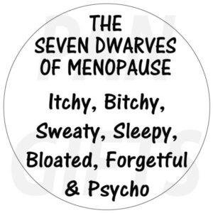 Novelty Fridge Magnet menopause