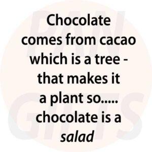Novelty Fridge Magnet Chocolate is a salad