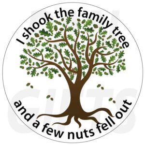 Novelty Fridge Magnets Family and Home